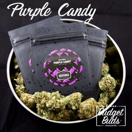 Purple Candy Shatter
