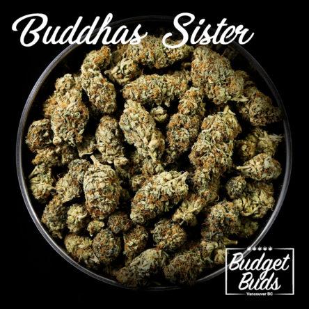 Buddha's Sister